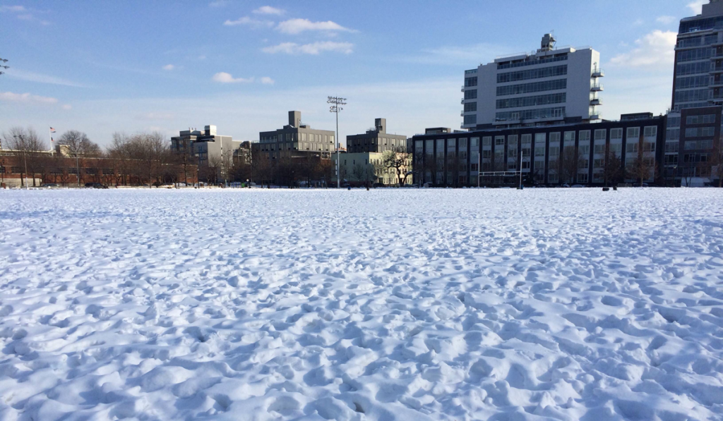 Soccer Field - winter