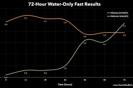 3-Day (72 Hour) Water Fast Results