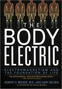 The Body Electric: Electromagnetism And The Foundation Of Life by Robert O. Becker