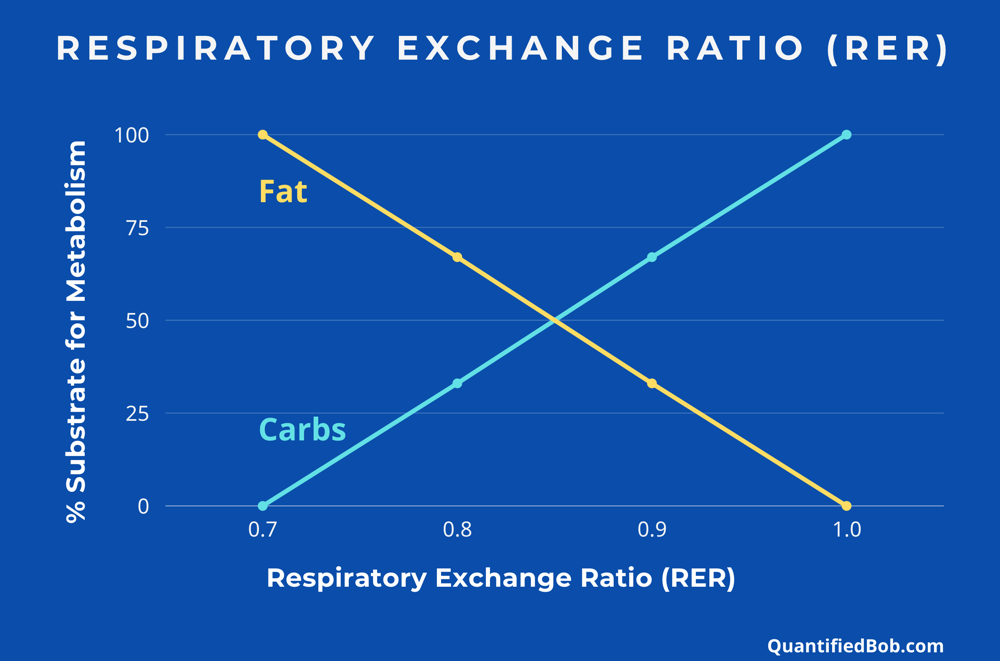 Respiratory Exchange Ratio (RER) - fats vs. carbs usage for energy
